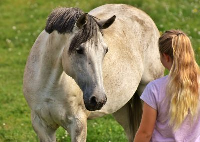 Equine assisted learning with disadvantaged children