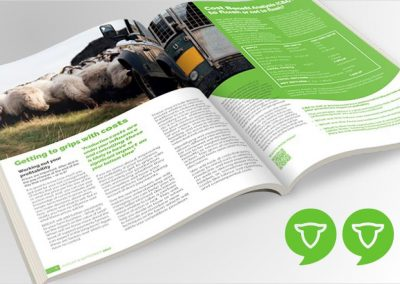 "Product Development of a technical magazine ""SHEEP MATTERS"""