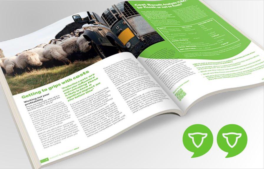 "Product Development of a technical magazine ""SHEEP MATTERS"""
